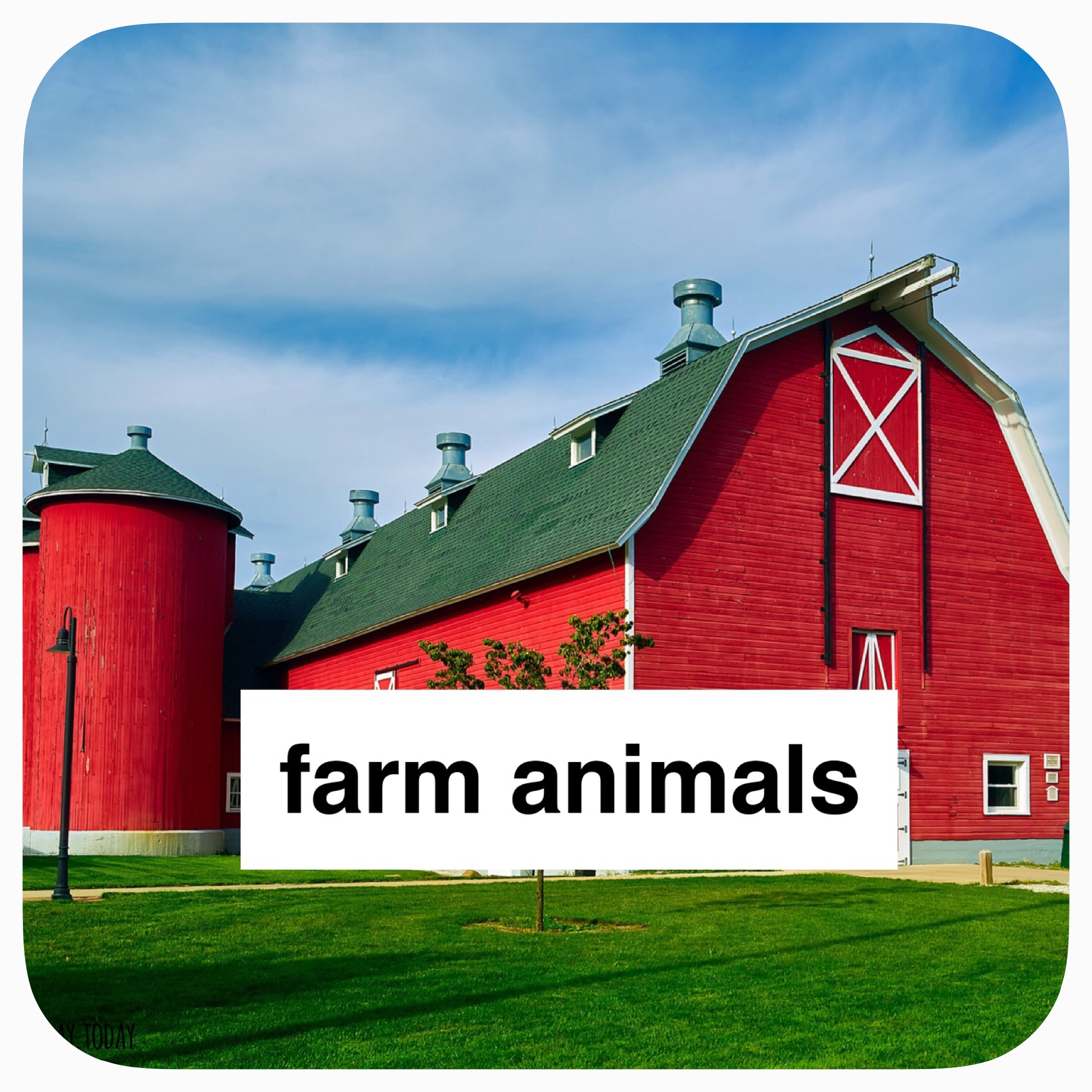 farm animals thematic study