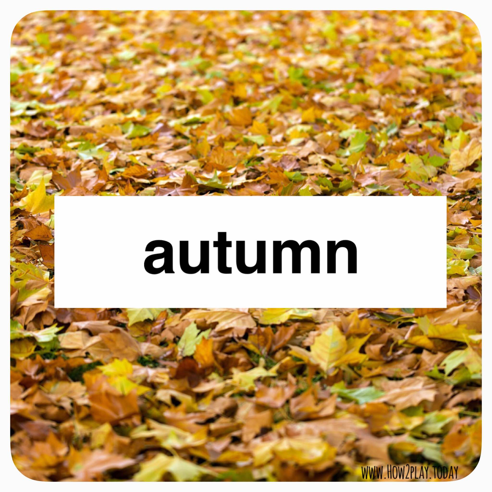 Autumn inspired activities for toddlers, preschoolers, primary students from @how2playtoday