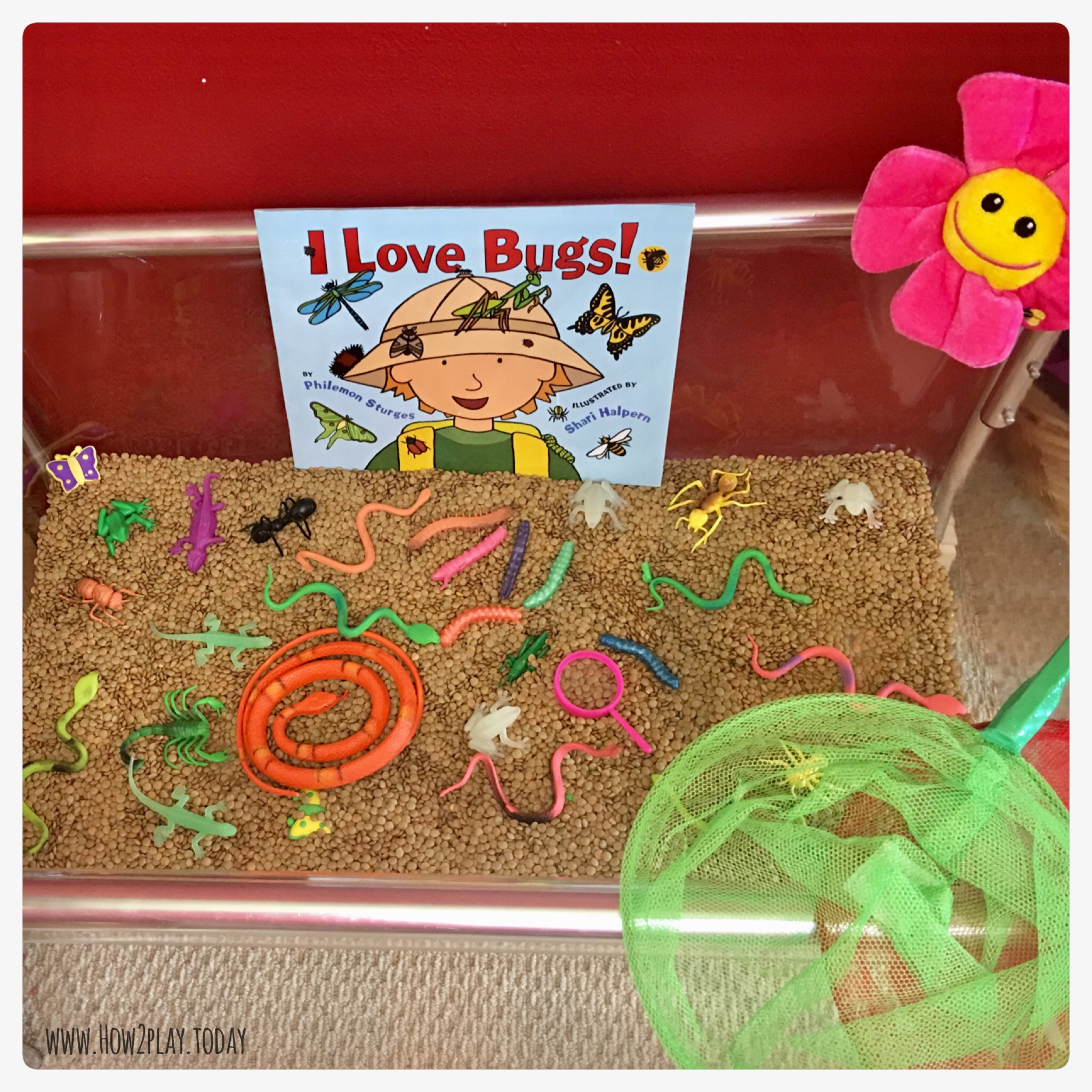I Love Bugs! Sensory table is all ready for our Bugs & Crawly Things curriculum.