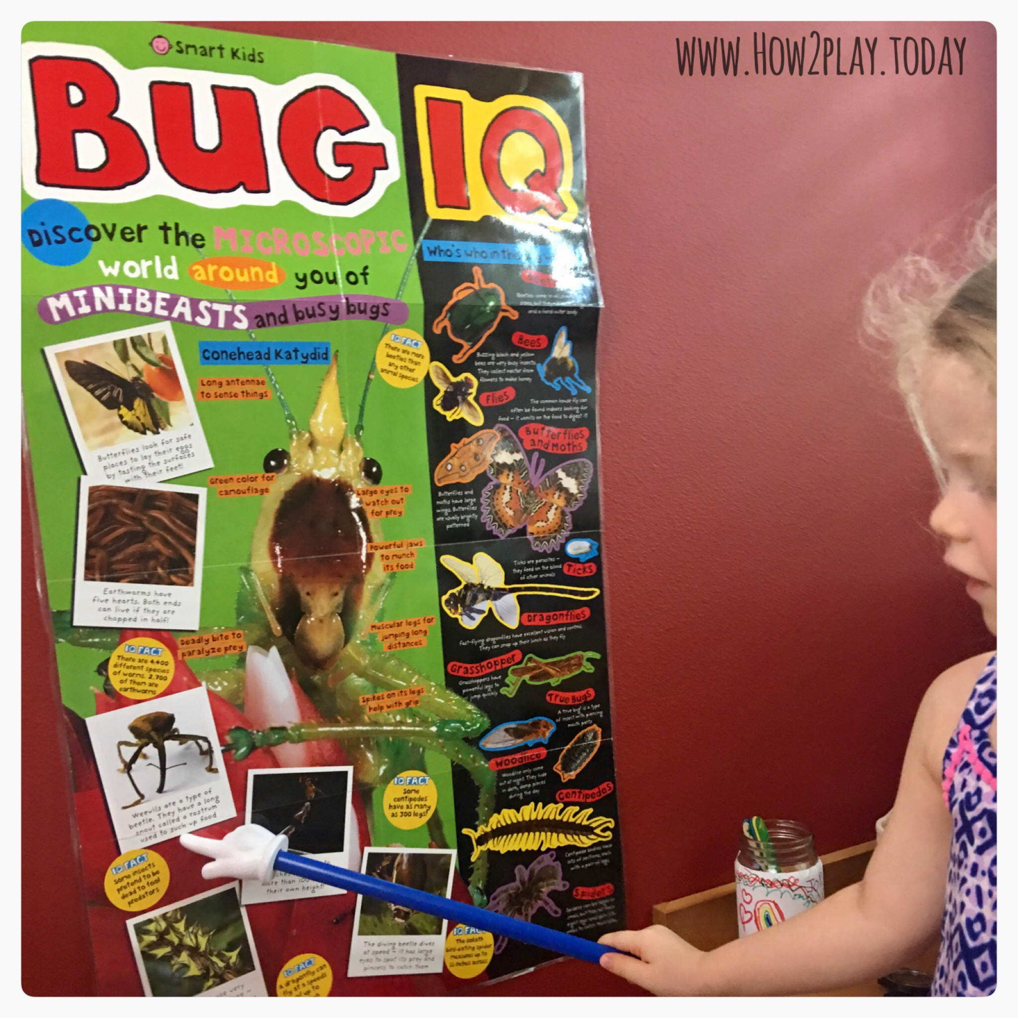 Bug IQ poster adds fun and facts to our Bugs and Crawly Things curriculum. @how2playtoday