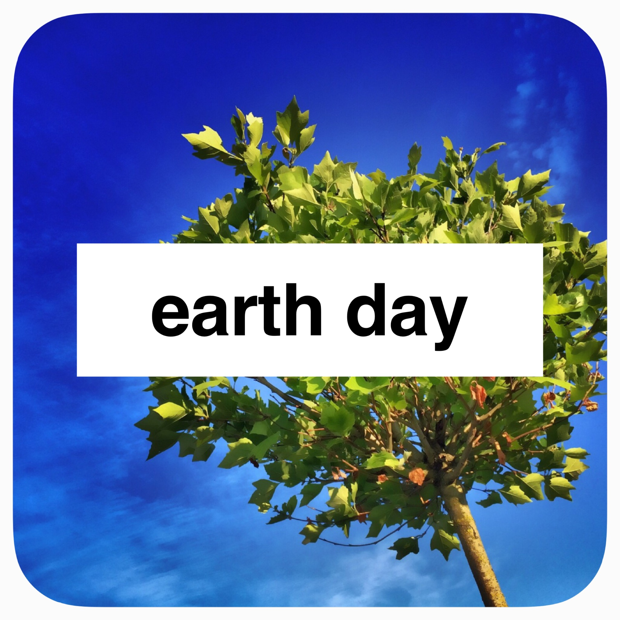 Holiday Play: Earth Day