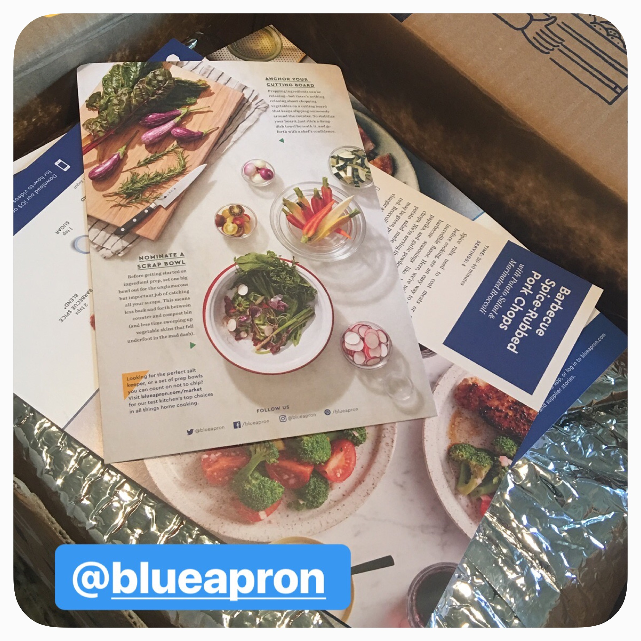 At the end of a busy day, sometimes it's challenging to put together a healthy dinner for the family.  I decided to try out Blue Apron, a food order service that delivers fresh, high-quality food straight to your door.  You still need to cook the meals but they provide all of the needed ingredients and in the exact portions you need to create the meals.  Recipes are included!
