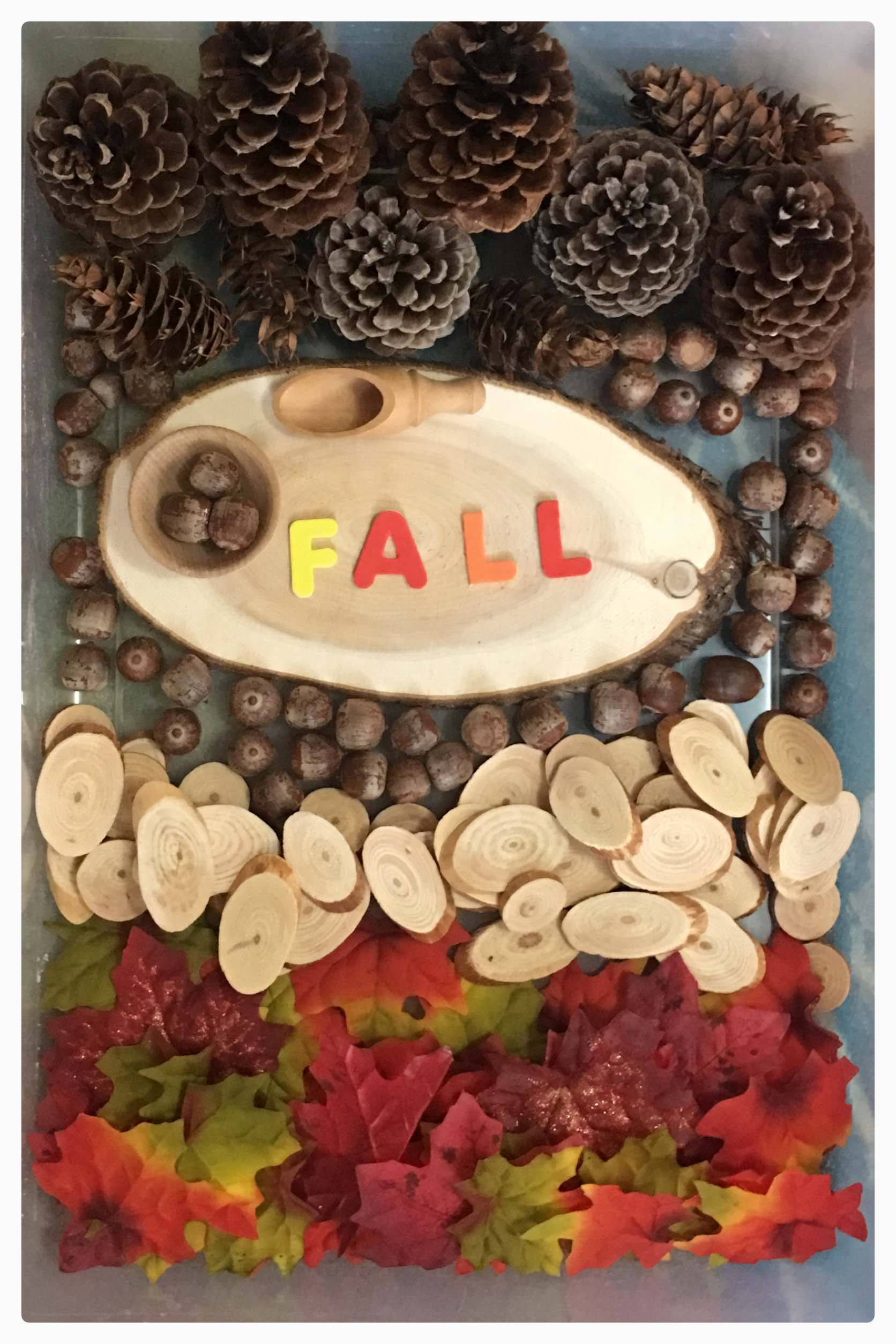 Creating simple sensory bins to celebrate the fall season. This contains silk leaves so can be used over and over again.