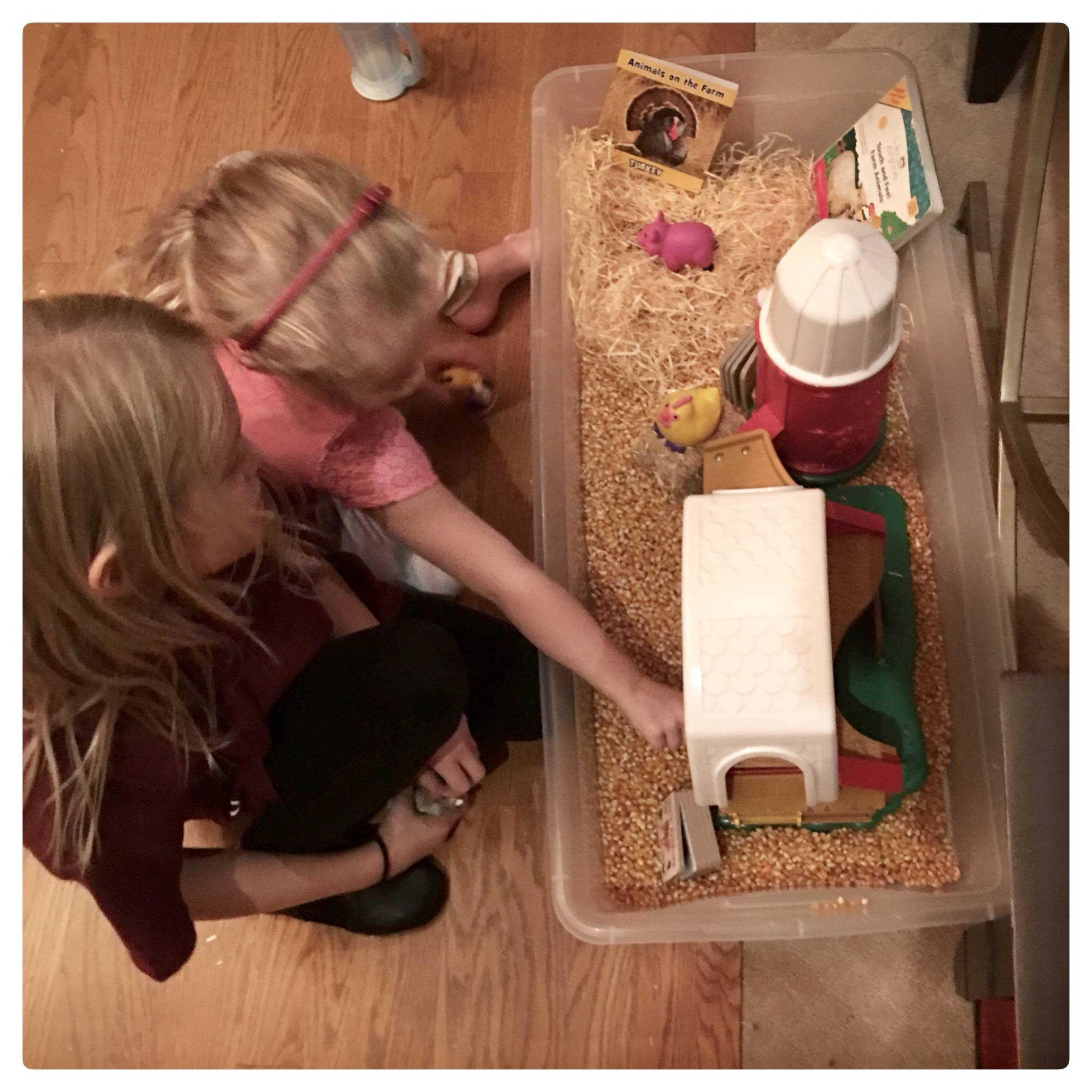 Creating fun and simple sensory bins to explore Farm Animals
