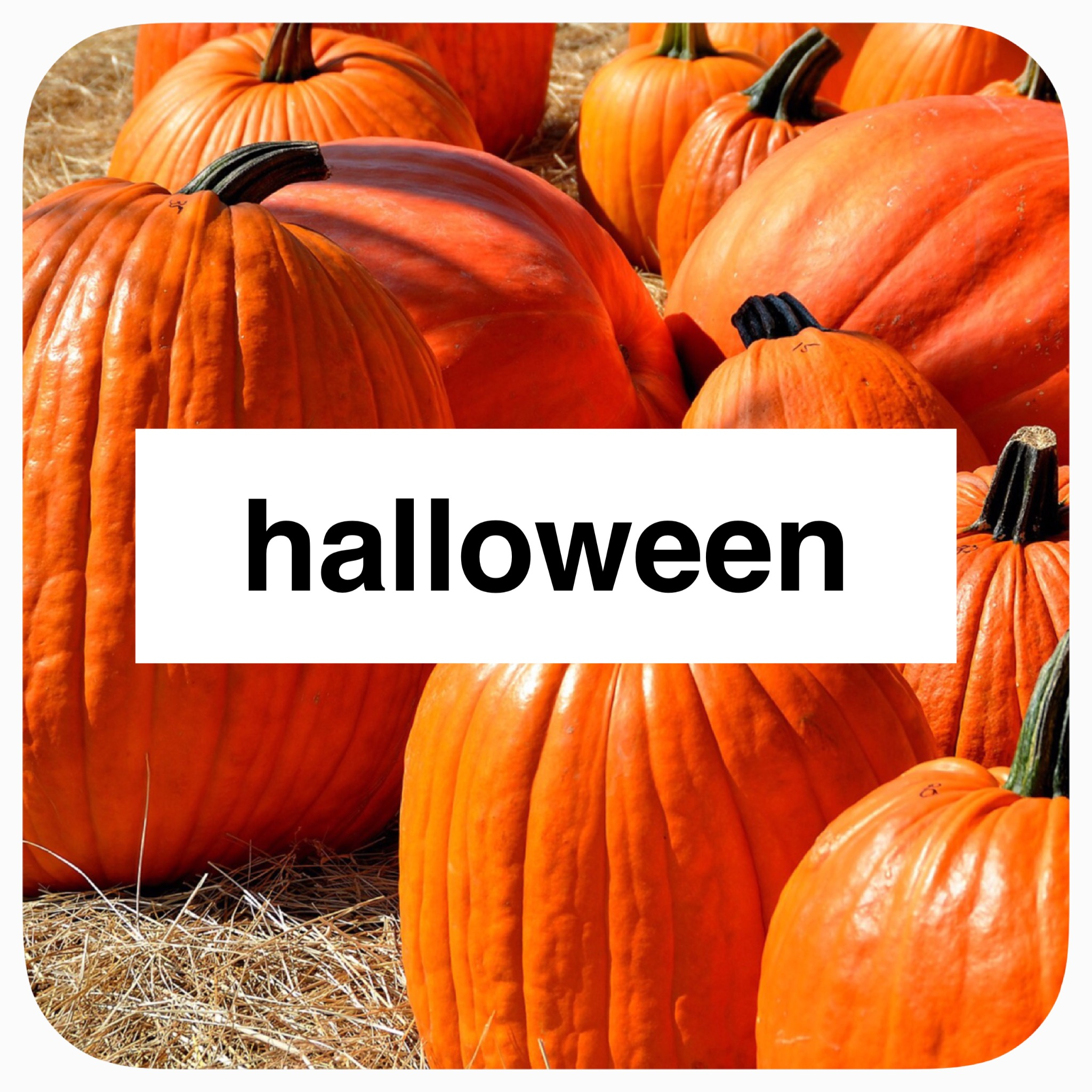 Halloween/ Fall related activity and projects for you and your little one.